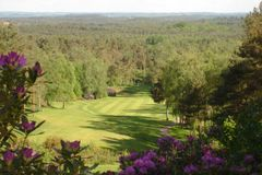 Old Thorns Manor Hotel, Golf & Country Estate