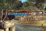 Carousel image 8